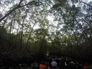 trini swamp boat