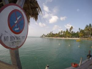 tobago no diving